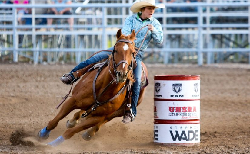 Businesses Negatively Affected by the Houston Rodeo Cancellation