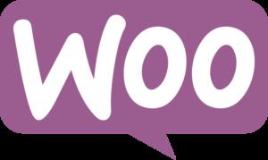 woocommerce ecommerce seo expert