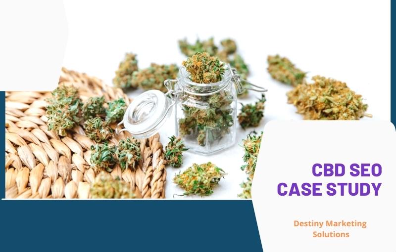 Texas CBD SEO CASE STUDY destiny marketing solutions