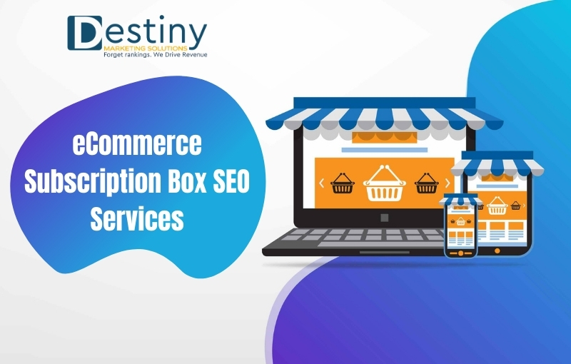 ecommerce subscription box seo services destiny marketing solutions