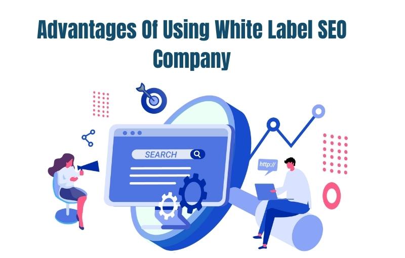 advantages of using white label seo company destiny marketing solutions
