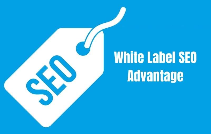 white label seo advantage destiny marketing solutions